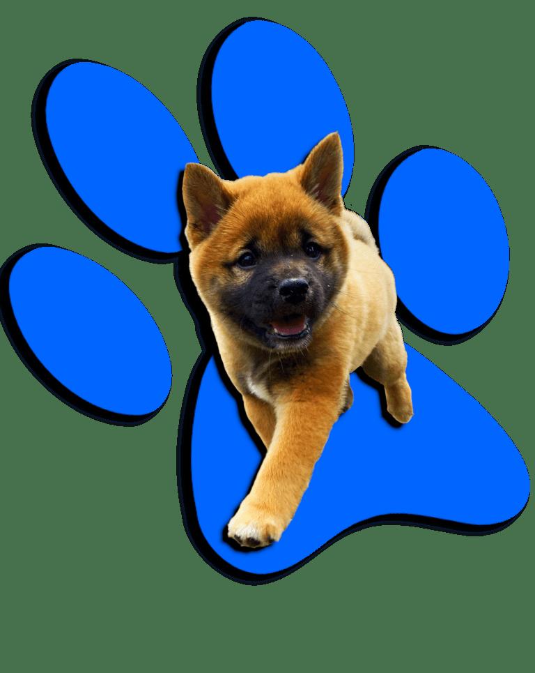 Breeders-Pick-Logo